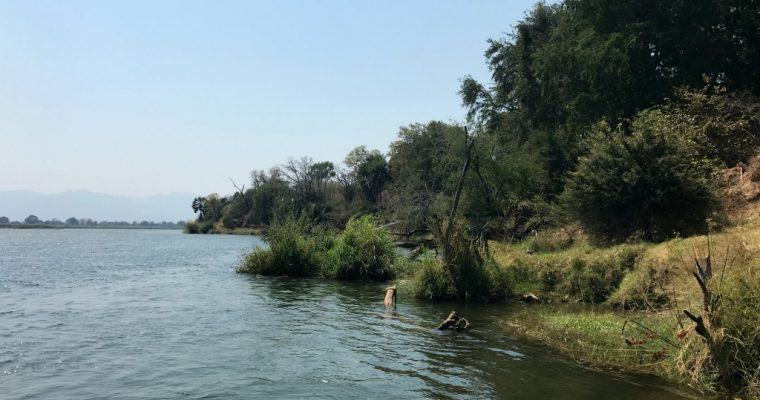 [TRAVEL]: 5 Nights in Zambia August 2017