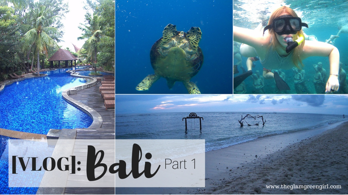 [VIDEO]: Bali Vlog – Part 1