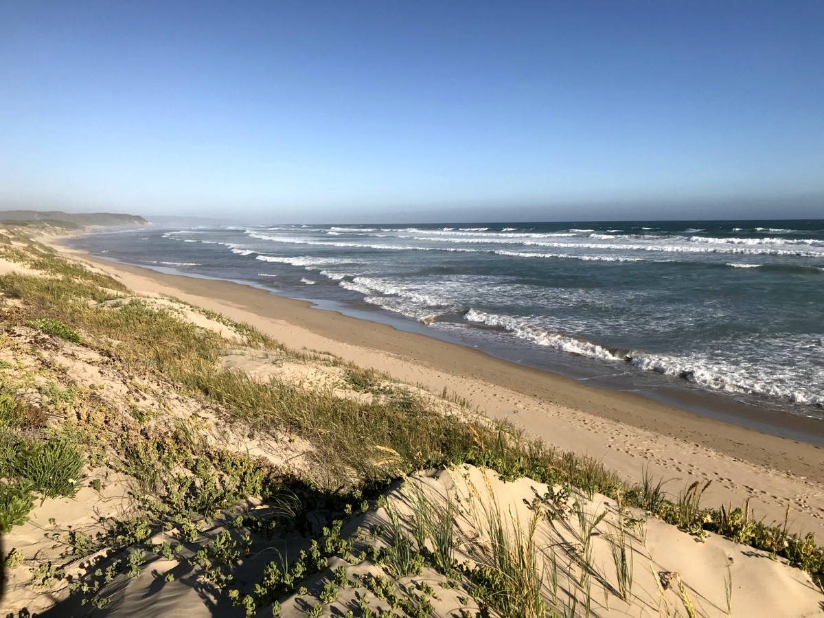 [TRAVEL]: 3 Things To Do in Stilbaai