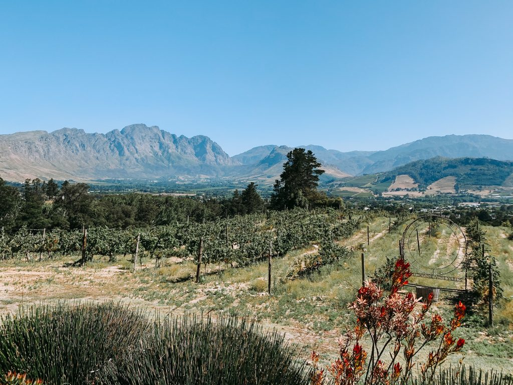 View of Franschhoek